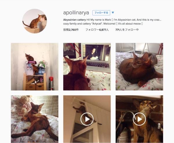Instagram-01