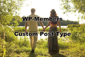 WP-Membersカスタム投稿タイプ-ic02